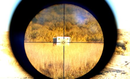 Section 230 in the crosshairs
